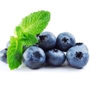 KS19346-Blueberry-Aroma